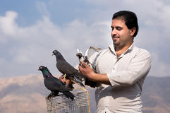 Iraqi pigeon collector. A portrait of an Iraqi pigeon collector holding a cage with pigeons on it in one hand and a dove in another one Stock Photography