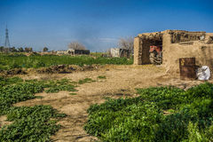 Iraqi Village in Spring Royalty Free Stock Photos