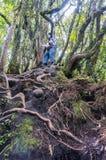 Irau mount hiker Stock Photo