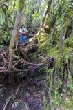 Irau mount hiker Stock Photography