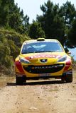 IRC 2010  - Neuville Thierry Stock Photos