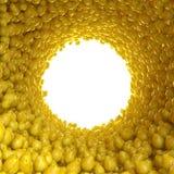 Сircular tunnel av päron Vektor Illustrationer