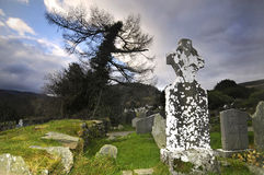 Ireland. Glendalough cemitery in winter, Ireland Royalty Free Stock Image