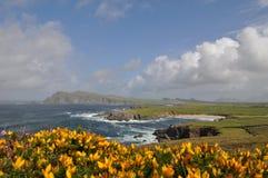 Ireland. An amazing seascape of Ireland coasts stock photography