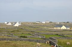 Ireland Aran island stone walls and houses Royalty Free Stock Images