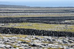 Ireland Aran island stone walls. A lacework of ancient stone walls (1,600 km or 1,000 mi in all) enfolds all three islands to contain local livestock Royalty Free Stock Photos