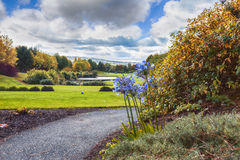 Ireland autumn golf area Royalty Free Stock Image