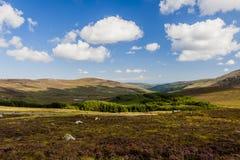 ireland berg wicklow Arkivfoton