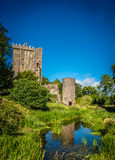 Ireland blarney castle stone kiss royalty free stock image