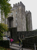 Ireland Bunratty Castle Royalty Free Stock Photo