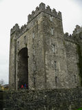 ireland bunratty slott Royaltyfri Foto