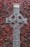 Ireland, Celtic cross. Against a red ivy wall royalty free stock images