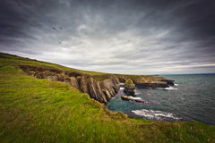 Ireland, cliffs under dramatic sky, Loop Head Stock Photo