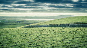 Ireland coast, green grass, blue skies with clouds. Ireland coast, green grass, blue skies, clouds, rain coming stock image