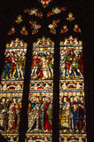 ireland dublin befläckt exponeringsglas Royaltyfria Foton