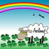 ireland får vektor illustrationer
