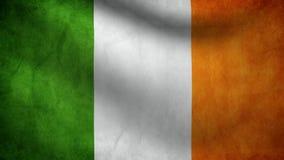 Ireland flag. Animation of Ireland flag moving stock footage