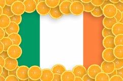 Ireland flag in fresh citrus fruit slices frame stock image