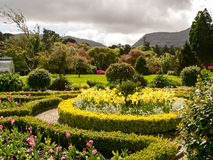 Ireland. Killarney National Park Stock Image