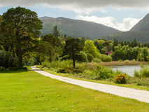 Ireland. Killarney National Park Royalty Free Stock Photography