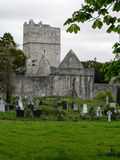 Ireland. Killarney National Park Royalty Free Stock Photography