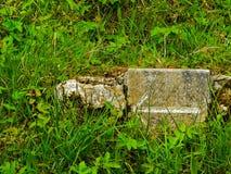 ireland Killarney nationalpark Royaltyfria Bilder
