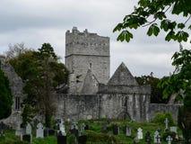 ireland Killarney nationalpark Royaltyfri Bild