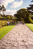 ireland Killarney nationalpark Arkivbild