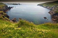ireland krajobrazowego scenicznego seacape wibrujący zachód Obraz Stock