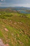 ireland krajobrazowego seascape wibrujący zachód Zdjęcie Royalty Free