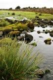 Ireland landscape Royalty Free Stock Photos