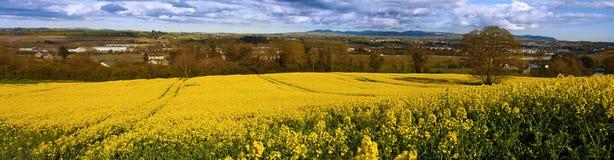 Ireland landscape Royalty Free Stock Image
