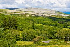 Ireland Landscape. Landscape of County Clare, Ireland. Trees and a winding road are in the foreground. A hill of The Burren and the sky are in the background Royalty Free Stock Photo