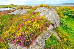 Ireland landscape hdr Stock Images