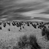 Ireland. Landscape in Northern Ireland in black & white. Scenery of Games of Thrones Royalty Free Stock Image