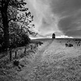 Ireland. Landscape in Northern Ireland in black & white. Scenery of Games of Thrones Royalty Free Stock Photo