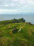 Ireland. Landscapes. Panorama with the Skelling Rocks and the Atlantic ocean from Valentia Island Stock Image