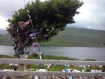 Tree of wishes. Ireland, the magic land. It´s time to make a wish. Tree of wishes by the lake stock photos