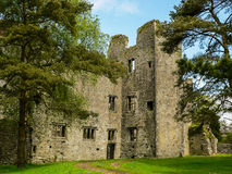 Ireland. Mallow - Mala. The ruins of the Old Mallow Castle, near the River Blackwater, in the Munster region Royalty Free Stock Photos
