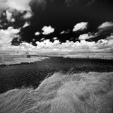 Ireland. Northern Ireland in black & white. Scenery of Games of Thrones Royalty Free Stock Images