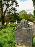 ireland Parque nacional de Killarney Imagem de Stock