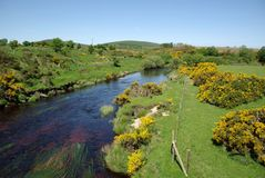 ireland rzeka Obrazy Royalty Free