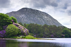 Ireland Scenic Lake and Mountain Royalty Free Stock Images