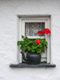 Ireland. A small window with geraniums Stock Photos