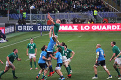 Ireland touche. A touche with the capitain paul o'connell during the rbs 6 rugby match italy vs ireland played at rome.7/2/2015 Stock Photo