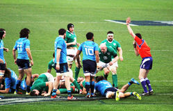Ireland try Stock Images