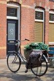 Irgendein altes Fahrrad im Standplatz Stockbilder
