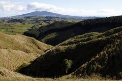 Irgendwo in Neuseeland Stockbild