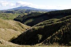 Irgendwo in Neuseeland Lizenzfreies Stockfoto