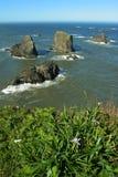 Iride dell'Oregon e rocce litoranee Immagine Stock